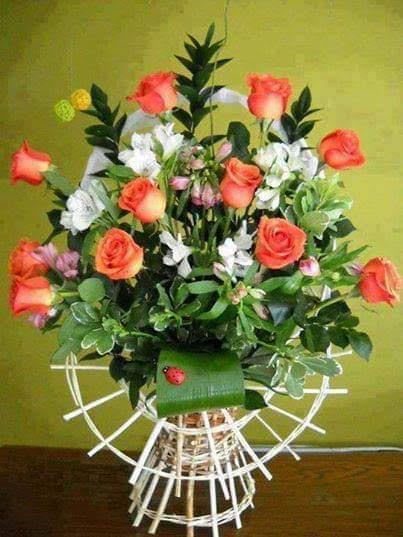 FB_IMG_1547842646045