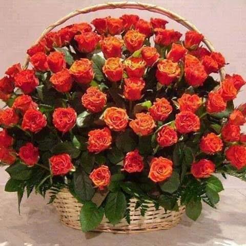 FB_IMG_1547843839197
