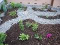 moje zahrady 023